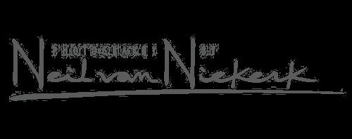 Neil van Niekerk recommended flash modifier